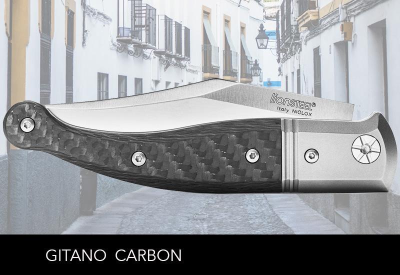 LionSteel Gitano Carbon